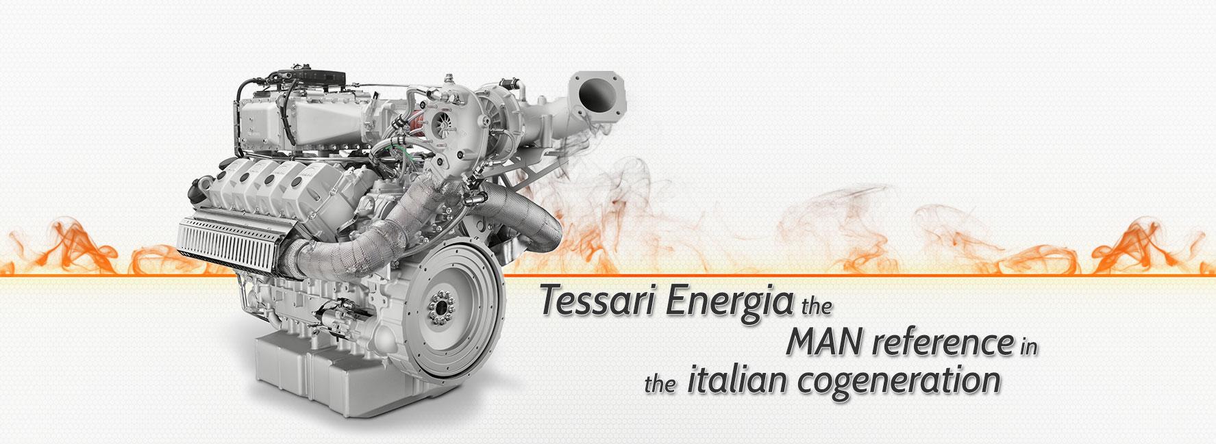 riferimento_cogenerazione_italiana-v4_EN